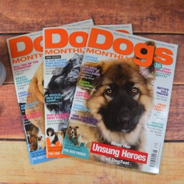 dogs-monthly