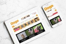 dogs monthly digital