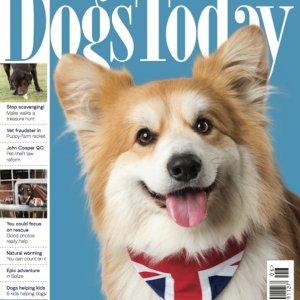 Dogs Today Magazine June 2018 Issue